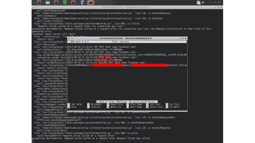 Trotz SSL: abgefangene Login-Informationen