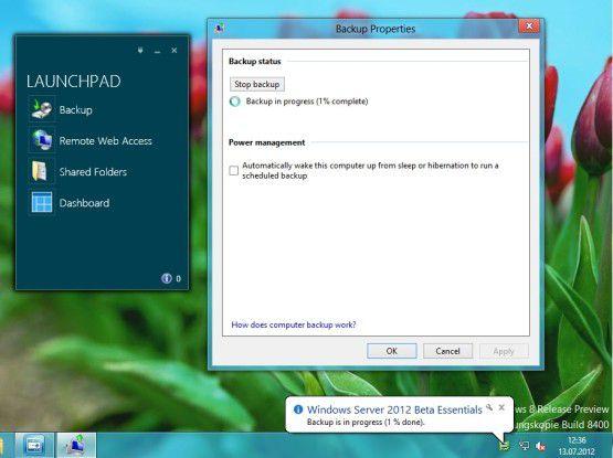 Client-PCs lassen sich auch auf dem Windows Server 2012 Essentials sichern. Via Web-Portal hat der User remoten Zugriff.