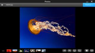 Einmalige Foto-Aufnahmen sichern: Tipps - so schützen Sie Ihre Fotodateien vor dem Verlust