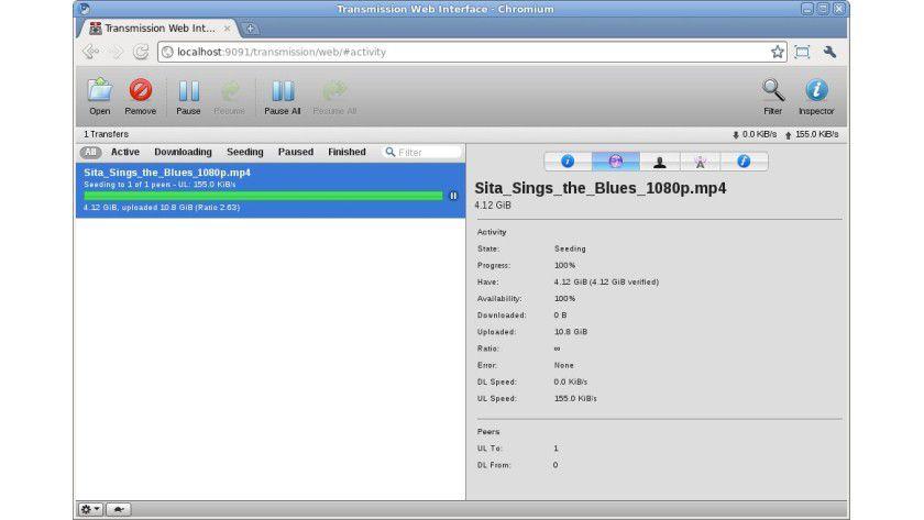 Der Raspberry Pi kann als NAS genutzt werden und gleichzeitig Torrents aus dem Internet herunterladen
