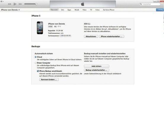 Über iTunes sichern Sie über ein verschlüsseltes Backup alle auf dem iPhone gesicherten Daten inklusive der Passwörter.