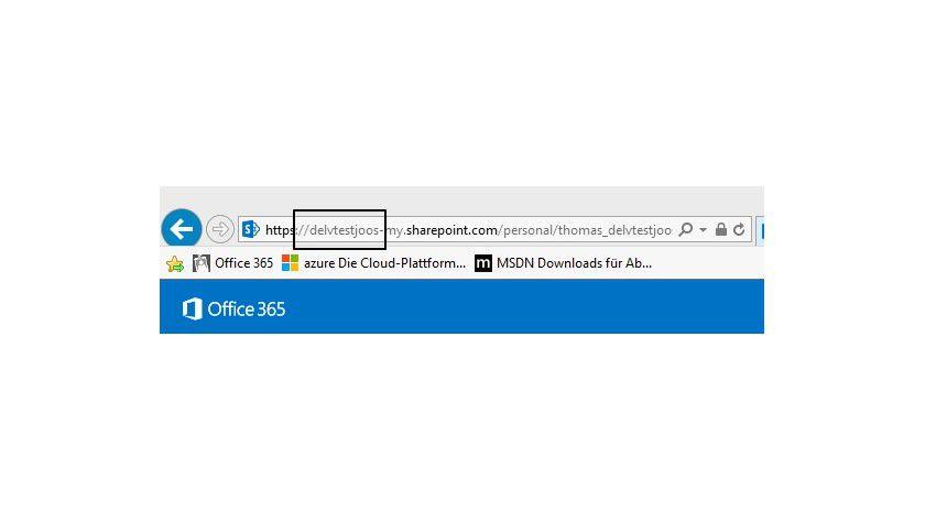 Den personalisierten Domänennamen für Delve sehen Sie über OneDrive for Business oder SharePoint Online.