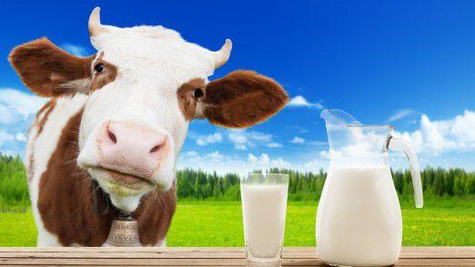 Die Digitalisierung setzt auch in der Landwirtschaft ein. Bewegungsprofile von Milchkühen sind dabei erst der Anfang.