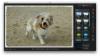 7 kostenlose Foto-Tools für den Mac