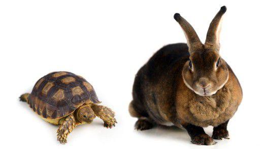 Forrester ist gegen das Konzept einer IT der zwei Geschwindigkeiten und vermutet eine steigende Komplexität.