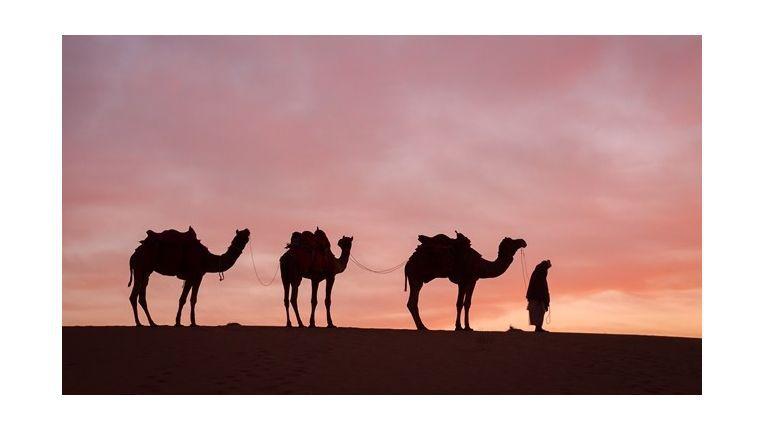 Als Fachhändler in die Wüste geschickt zu werden ist in diesem Fall eine Belohnung. Doch zuvor müssen einige Geräte und Neuverträge verkauft werden, um eine Chance für die Dubai-Tour zu haben.
