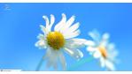 ownCloud, Tails & GNOME: Open-Source- und Linux-Rückblick für kw 33