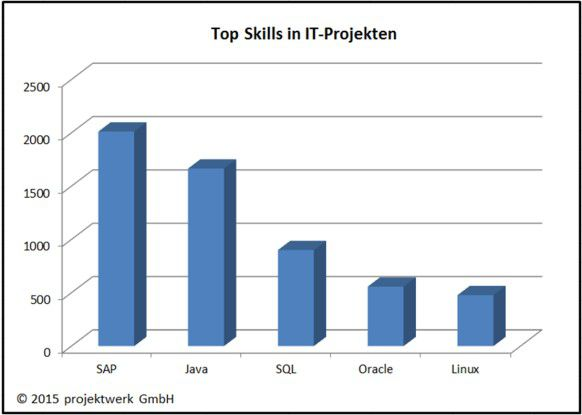 Marktmonitor: Die Top Skills in IT-Projekten auf it.projektwerk.com.