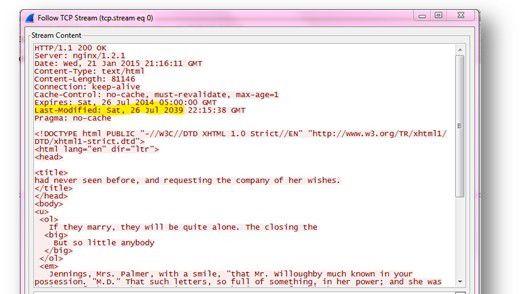 """Exploit Kits wie """"Angler"""" spähen Webserver gezielt nach Verwundbarkeiten aus."""