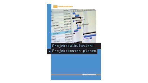 Premium E-Book: Projektkalkulation: Projektkosten planen