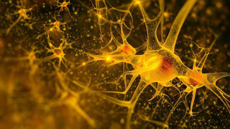 Neuronale Netze arbeiten wie das menschliche Gehirn - viele Knotenpunkte (Neruonen), dazwischen unendlich viele Leiterbahnen, die an Gewicht zulegen, je mehr Daten verbeitet werden.