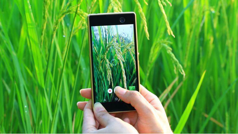 Augmented Reality versorgt den Bauern stets mit relevanten Informationen Drohnen können helfen, die Frucht zu überwachen und bei Schäden einzuschreiten Robotik ist längst nicht mehr nur in Form von Melkrobotern verfügbar