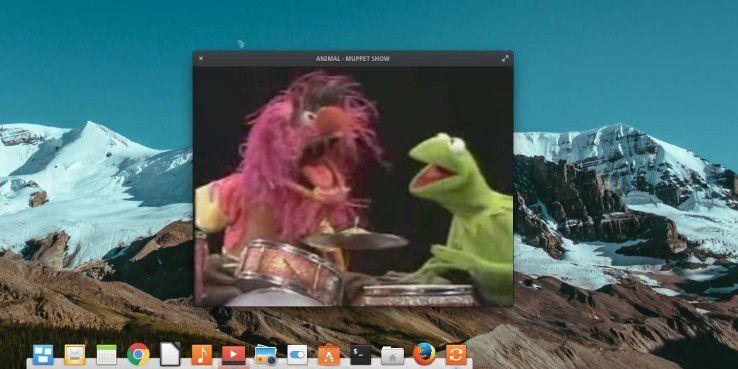 Mit installiertem ubuntu-restricted-extras rocken Animal und Kermin das InfinityBook.