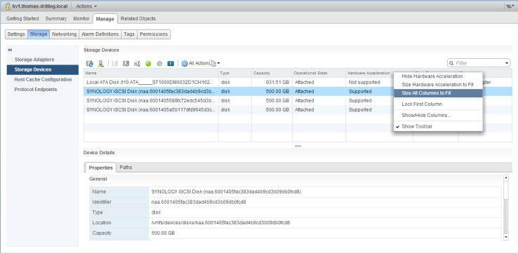 """Mit aktiviertem VAAI-Support erscheinen Storage-Devices in der Übersicht als """"Hardware-beschleunig""""."""