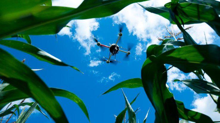 Precision Farming: In der Landwirtschaft ist der Einsatz von Drohnen bereits weit verbreitet.