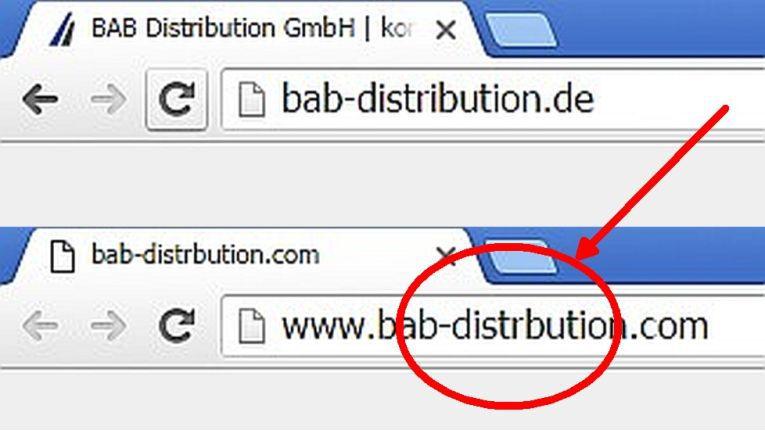 Die gefälschte Homepage ist nur an einem kleine Detail zu erkennen: In der URL fehlt bei Distribution das ''i''.