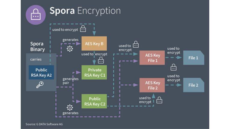 Die Ransomware Spora verwendet ein kompliziertes Verschlüsselungsverfahren.