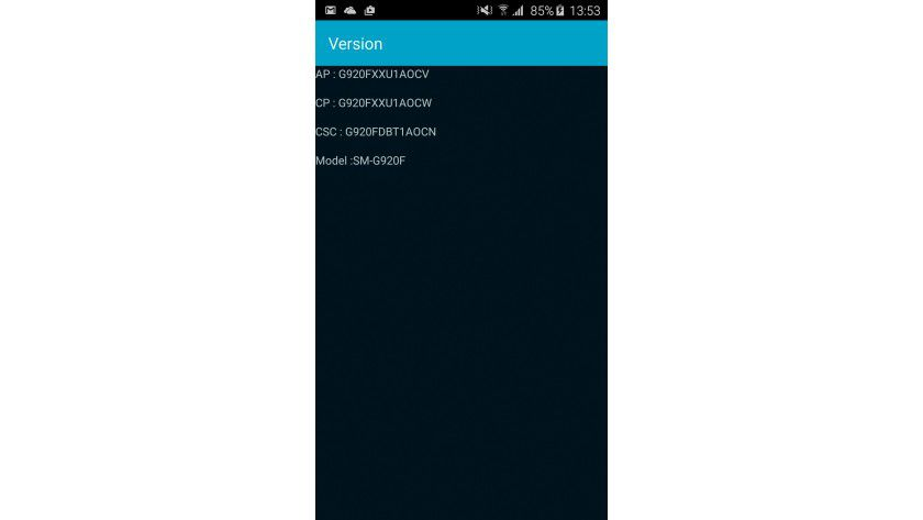 Überprüfen Sie, ob Ihre S6-Version tatsächlich unterstützt wird. Dazu tippen Sie einfach *#1234# in der Telefon-App ein.