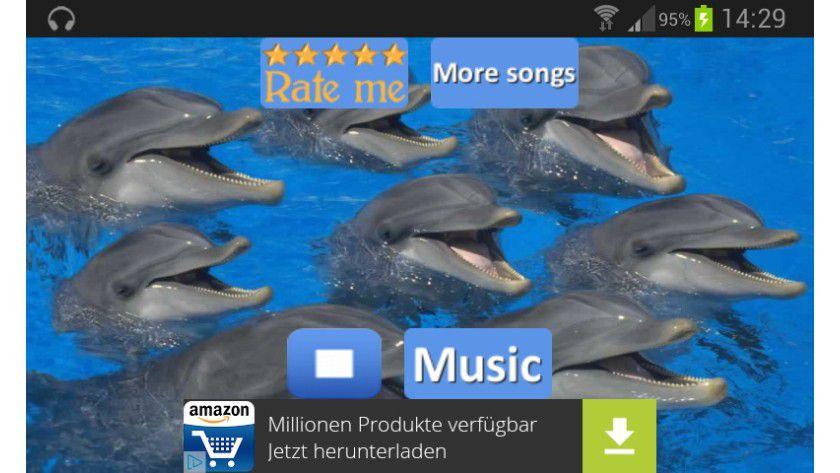 Dolphins - Sound zu entspannen