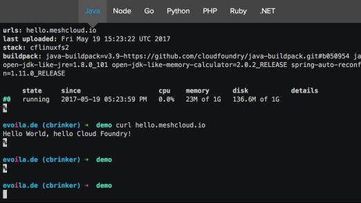 Entwickler steuern Cloud Foundry über eine Konsole.