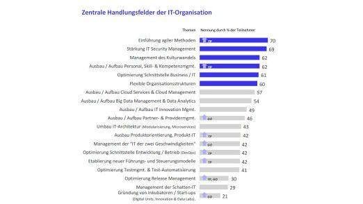 CIOs nennen viele Handlungsfelder, auf denen sie im Zuge der digitalen Transformation aktiv werden müssen. Die Kürzel bedeuten: Top Performer (TP) und Große IT-Organisationen (GO)