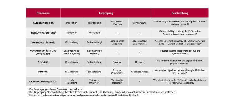 Die sieben Gestaltungsoptionen agiler IT-Einheiten.
