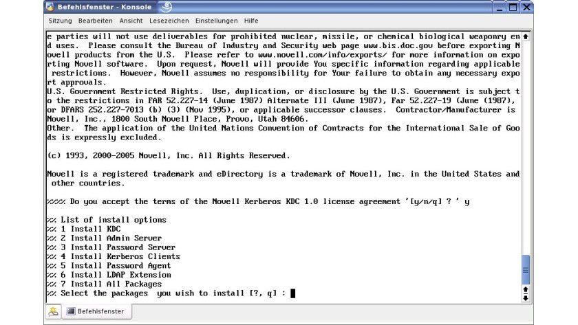 Bild 1: Die Installationsoptionen für die Einrichtung des Novell KDC.