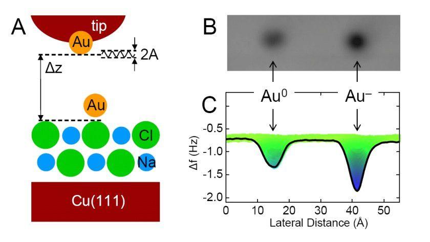 Modell des Versuchsaubaus (rechts) und Messung der der Kraftdifferenz zwischen einem neutralen Goldatom und einem Goldatom mit einem zusätzlichen Elektron (rechts). (Quelle: IBM)