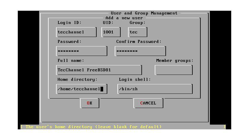 Unspektakulär: Da FreeBSD hauptsächlich als Server-Betriebssystem eingesetzt wird, ist die Installations-Oberfläche auf das Minimum reduziert.