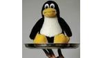 Dienstleistungen für Linux sind gefragt