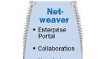 SAP öffnet sich .NET und Websphere