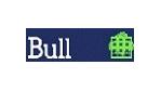 Bull weitet Jahresgewinn aus