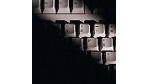 Computerkriminalität nimmt zu