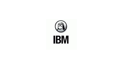 "Linuxworld: IBM propagiert ""Grid and Grow"""