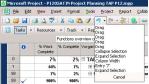 Office Project 2007 schließt große Lücken
