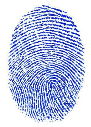 Den Schutz persönlicher Daten sollten Unternehmensleitung und CIO ernst nehmen.