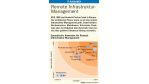 Remote Infrastruktur-Management - Foto: Forrester Research