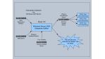 Server-Konsolidierung: Virtuelle Maschinen für Tester und Entwickler