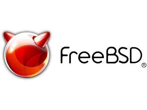 Ideal für Intranet- und Internet-Server: Das Gratis-Unix Free BSD.