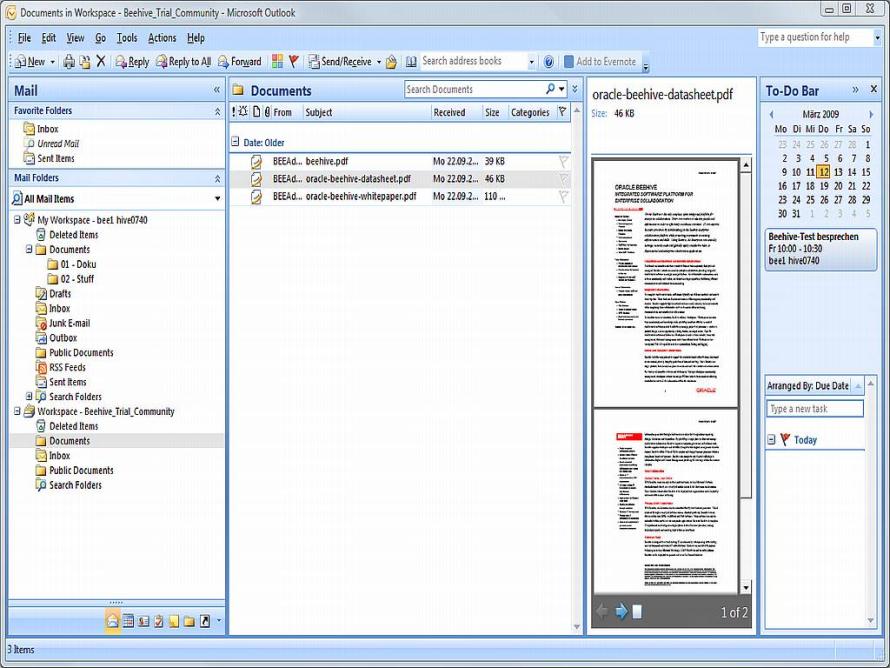 Der Teamspace von Oracle Beehive. Hier in Microsoft Outlook integriert.