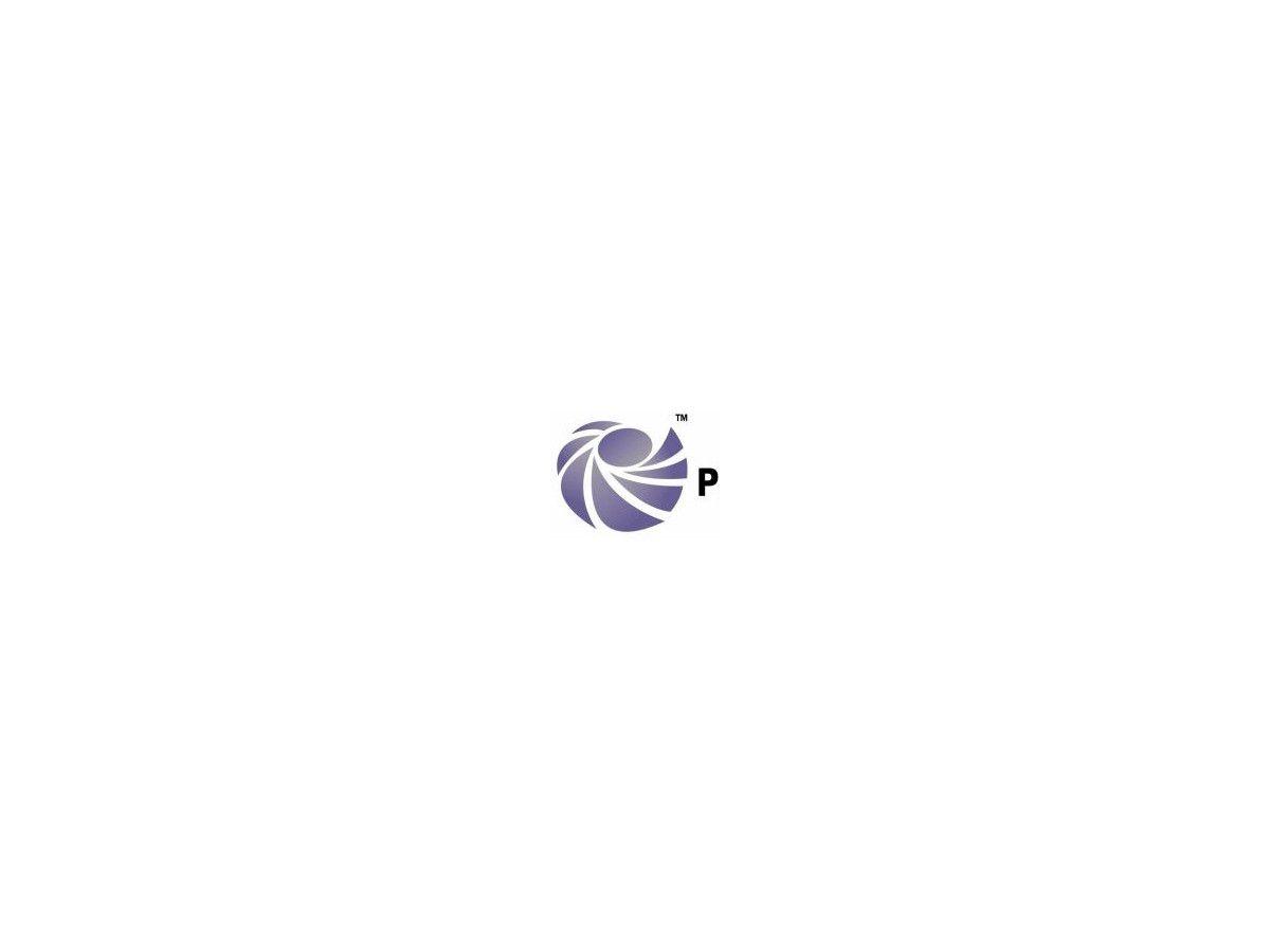 Wunderbar Matrixschablonenwort Bilder - Entry Level Resume Vorlagen ...