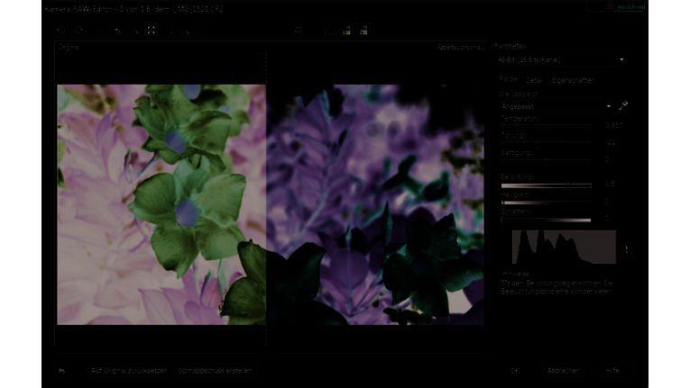 Photo-Paint X4 von Corel unterstützt RAW-Formate von mehr als 300 Kameramodellen.