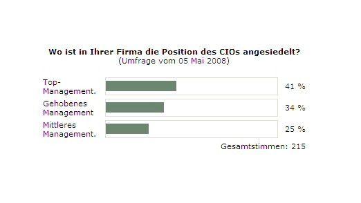Verteilung der CIO-Position - das Top-Management liegt vorn