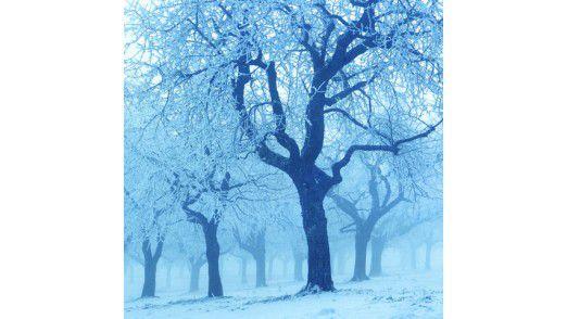 Die Temperaturen weit unter Null bergen Gefahren.
