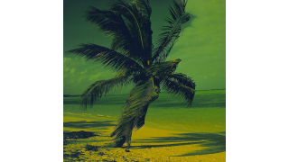 Keine Mails, Smartphone aus: CIO-Leser: Im Urlaub nicht erreichbar - Foto: MEV Verlag