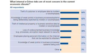 e-Crime Survey 2009 erschienen: Angst vor entlassenen Mitarbeitern wächst