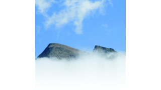 Business Analytics: Stochern im Nebel - Foto: Wolfgang Kruck - Fotolia.com