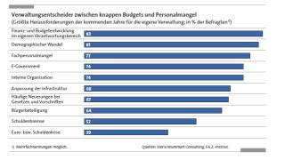 Maßnahmen bis 2014: Die Pläne und Projekte der Verwaltungen - Foto: Steria Mummert