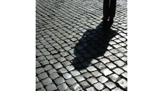 """Das Gespenst der Schatten-IT: Die IT selbst operiert gern im """"Schatten"""" - Foto: forelle66 - Fotolia.com"""