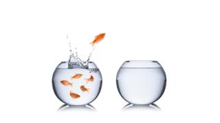 Die richtigen Fragen stellen: Worauf CIOs beim Jobwechsel achten sollen - Foto: stockphoto-graf - Fotolia.com